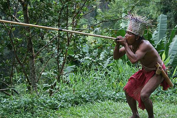 Bei den Orang Asli in Cameron Highlands