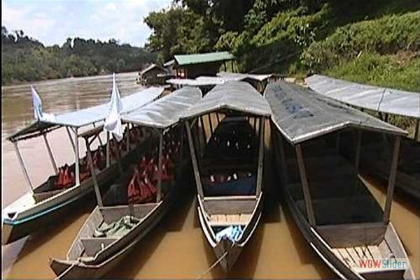 mit motorisierten Langbooten in den Regenwald