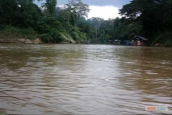Fluss Tembeling