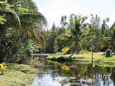 Landschaft Kuba